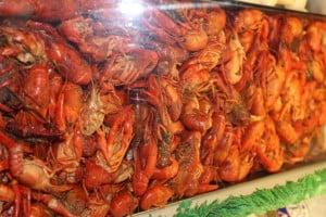 Atlantic Seafood9